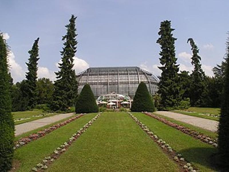 Sanierung des Botanischen Museums nimmt Gestalt an